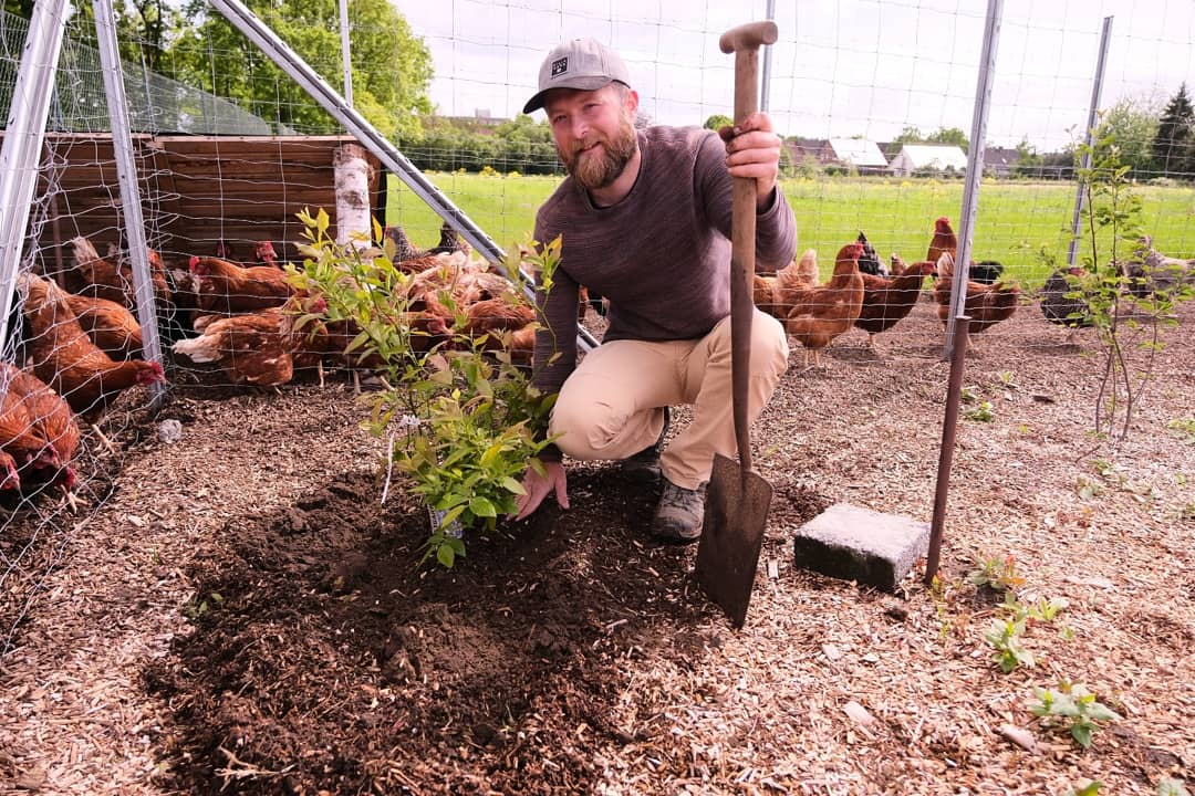 Michael im Waldgarten, Foodforest Design